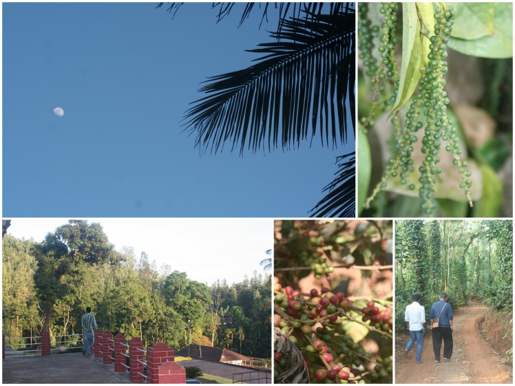 Lingering at Balur - exploring the estate with Amza and Rakesh.