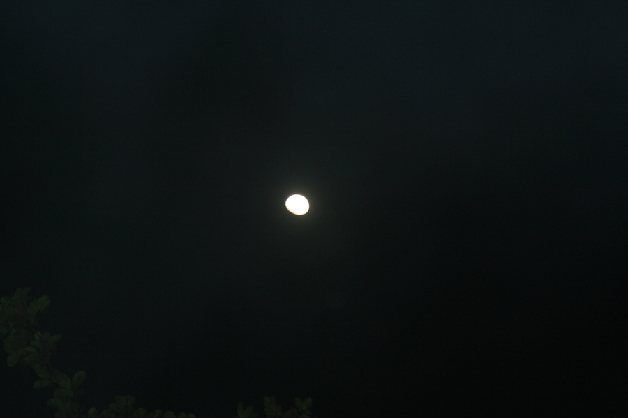 Moonlit night, Harley Estate